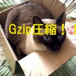 ページ表示速度の高速化をしてSEO対策!Gzip圧縮の設定