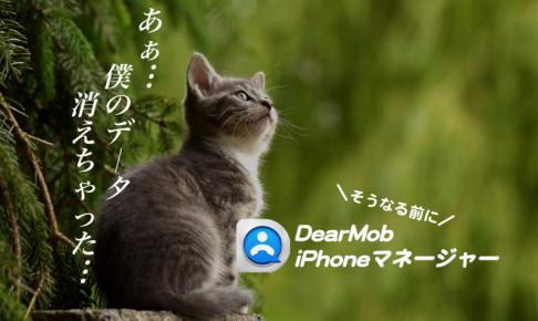 僕のデータ消えちゃった…になる前に!DearMob iPhoneマネージャー
