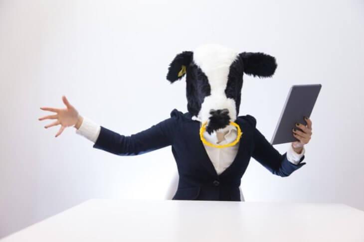 ブログ オワコン:牛系YouTuberがガジェットを語る