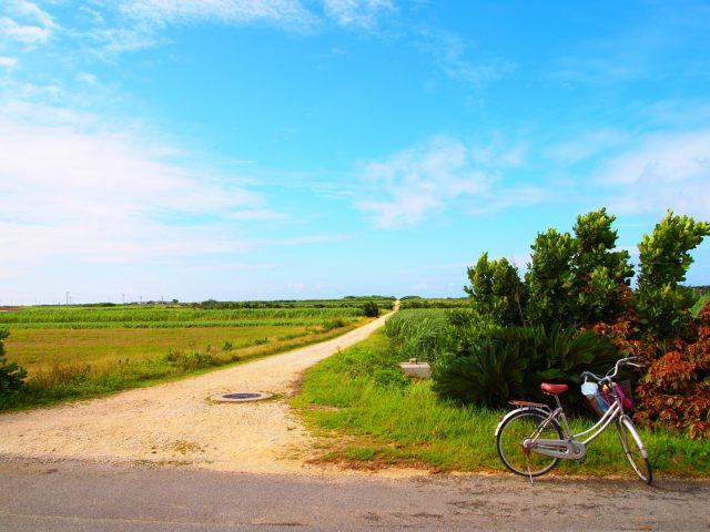 自転車で島を周る