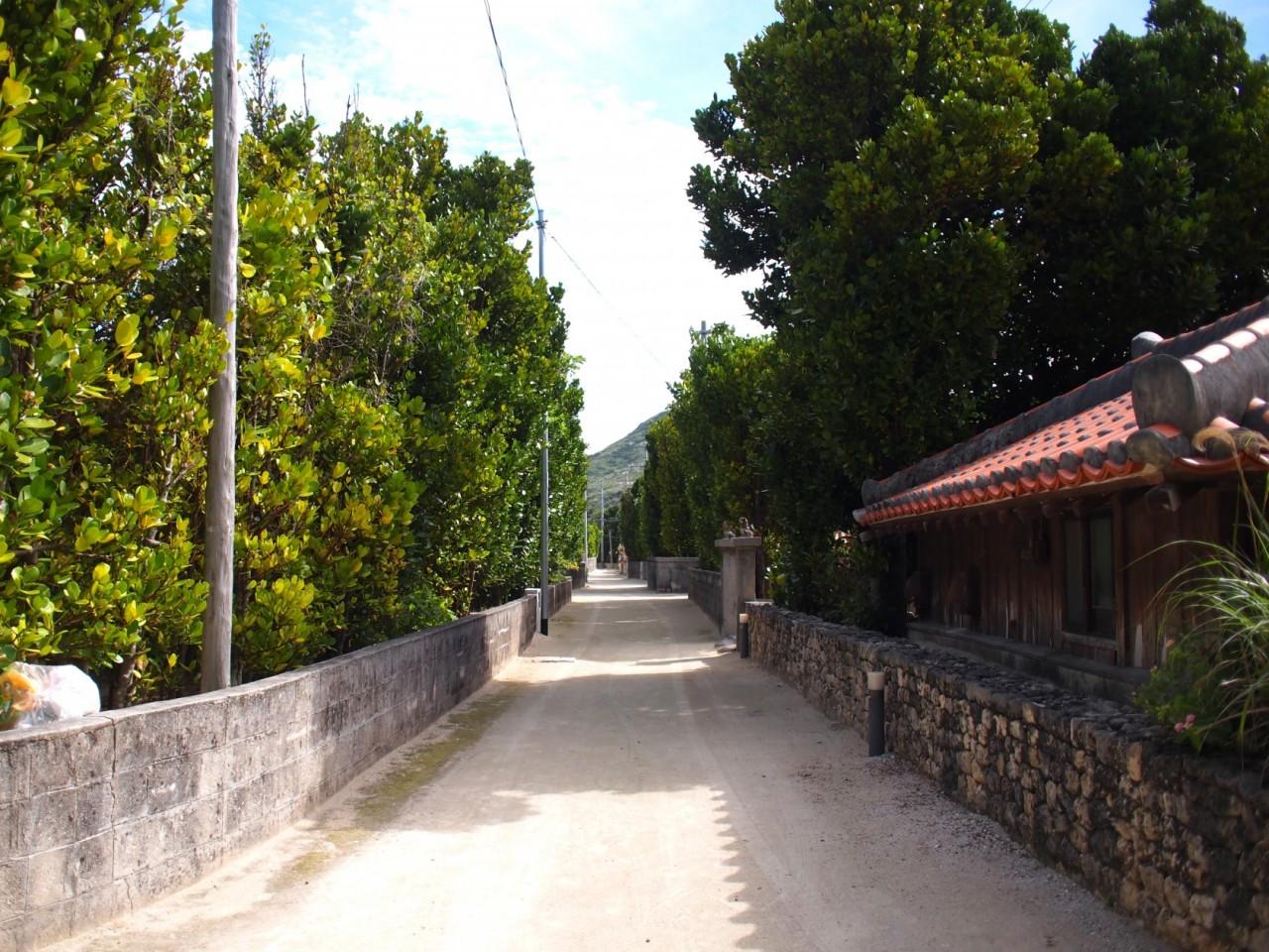 美しい白砂の道、渡名喜島の人々のちいさな積み重ね