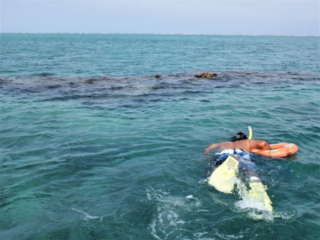 海に飛び込む