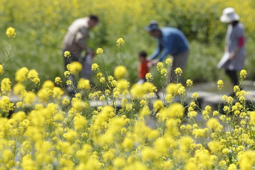 花畑で交流する人々