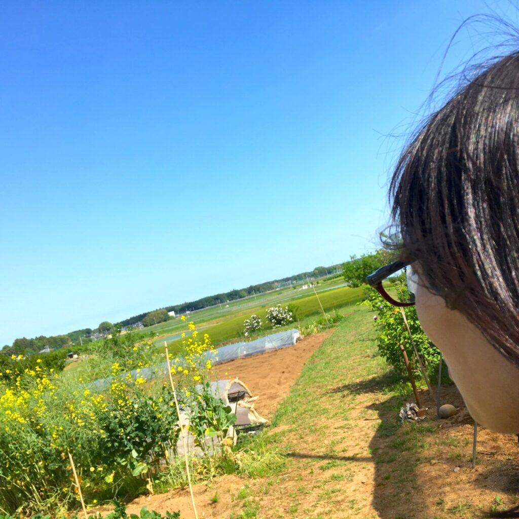笠間の風景